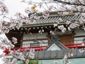 ハローストレージ 清須市のアイキャッチ画像